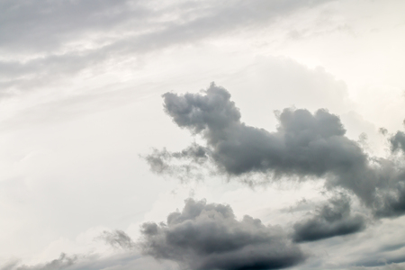 Abstract background, dark cloud on beautiful sky, it looks like a dog jumping happily in the sky, with a space for text.