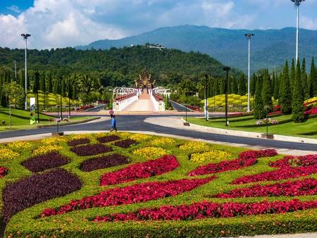 art: Paradise garden flower Chang mai Thailand
