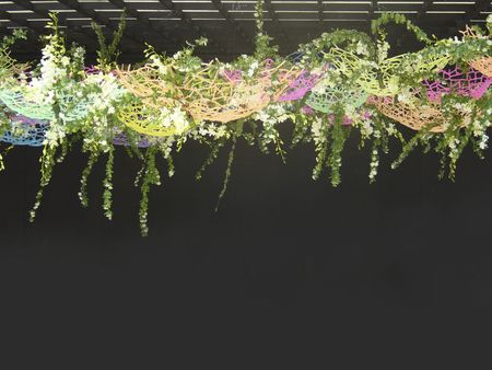 flower show: Flower Show Archivio Fotografico
