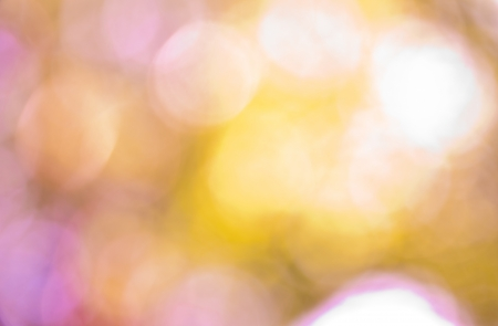 The abstract background of natural light bokeh photo