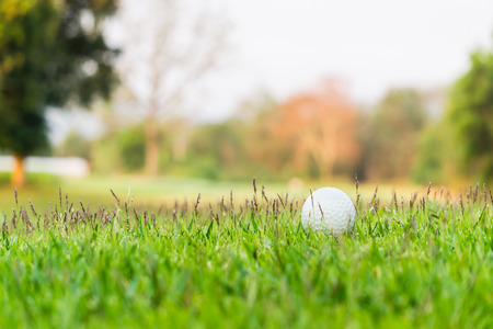 half ball: A golf ball is half buried in deep green grass in the rough