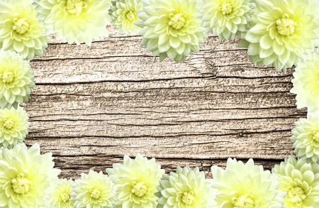 The frame of flower border on old wood texture background Stock Photo