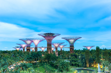SINGAPORE - May 13, 2016: Supertree Grooves over the blue sky. Gardens by the Bay is a park or botanic garden in Singapore.