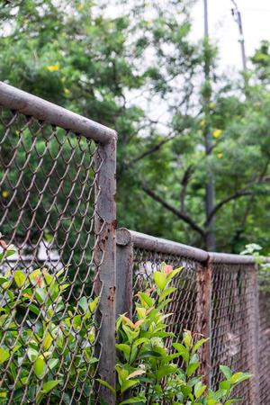 steel fence in the garden