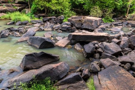 Mountain river, stones with moss and green trees photo