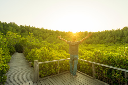 Asian man enjoying view nature of mangrove field or Golden Mangrove Field (Tung Prong Thong) is famous place for nature tourism in Klaeng, Rayong Thailand. Фото со стока