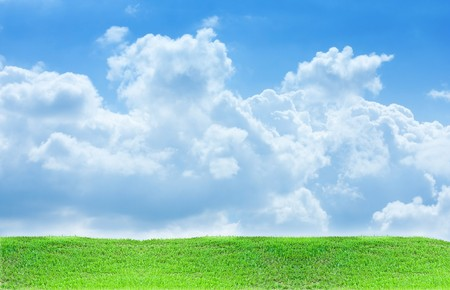grass and sky background Stock Photo - 8211688