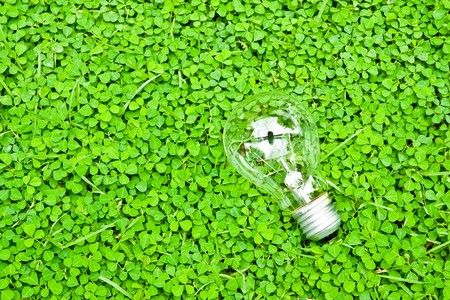 bulb on green Stock Photo - 8211720