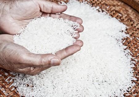 jasmine rice: arroz jazm�n