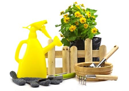 home gardening photo