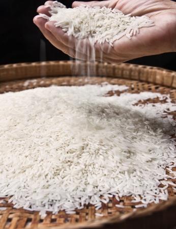 hand pouring thai jasmin rice