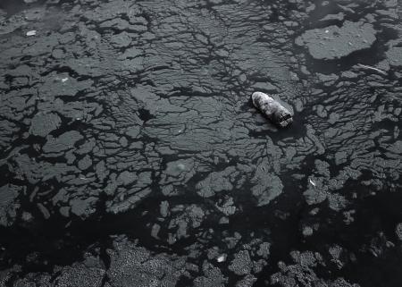 contaminacion del agua: botella de plástico flotando en el agua tóxica