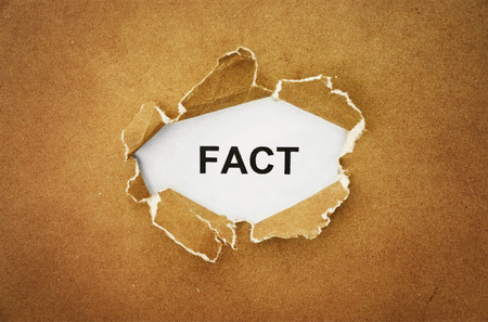 fact: the word fact in the hole of brown paper