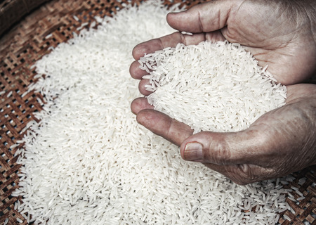 hunger: rice in hands of elder Stock Photo