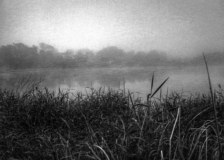 clump: clump with lake landscape background (black and white vintage style)