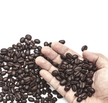 coffee beans: coffee beans in hand over white background