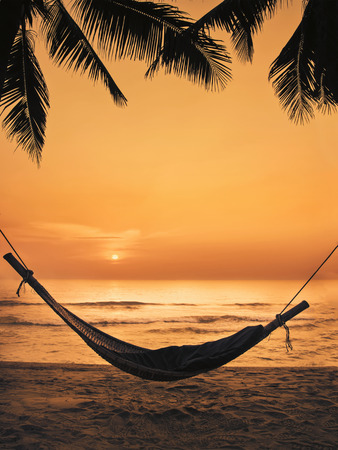 beach scene: silhouette of a hammock and coconut tree on the beach