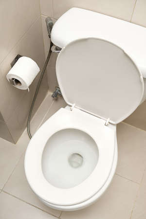 Tissue paper roll and ceramic toilet bowl in the washroom.