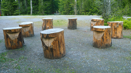 circle of 8 wooden stools outside in the forest