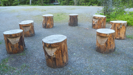 circle of 8 wooden stools outside in the forest 스톡 콘텐츠 - 108396848