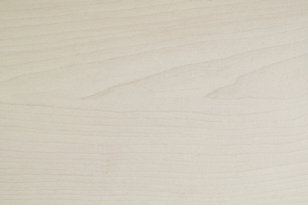 white wood floor: wood texture with natural wood pattern