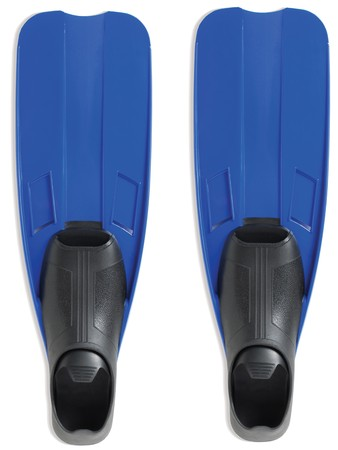 flippers: Aletas sobre un fondo blanco