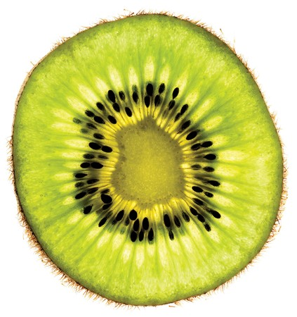 slice of kiwi fruit on a white background Stock Photo - 7924921
