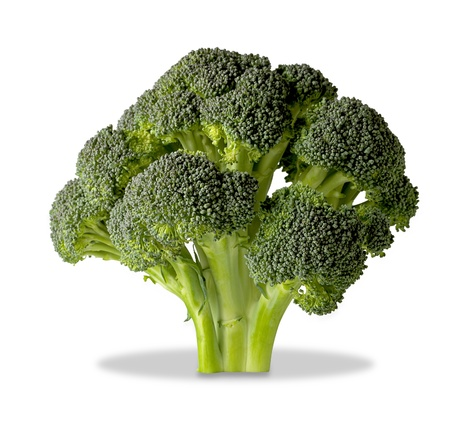 brocolli: a brocolli tree isolated on white with clipping path