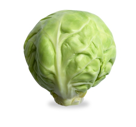 single brussels sprout, isolated on a white with clipping path