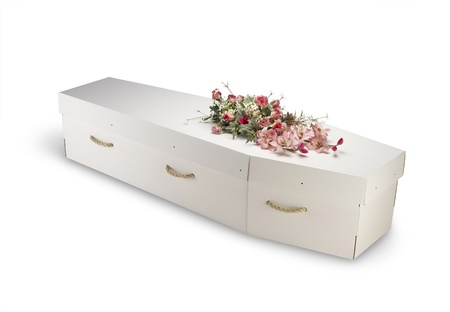 a cardboard; bio-degradable; eco; ecological; coffin; isolated; clipping path; box; case; casket; cemetery; closed; dead; death; eternity; funeral; grave; object ; white background; green; ethical,economical