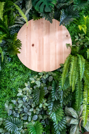 Circle wooden sign board on vertical green leaves wall background. Decorated wall with blank signage and plants.