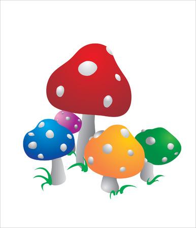 Five multi-colored color mushrooms