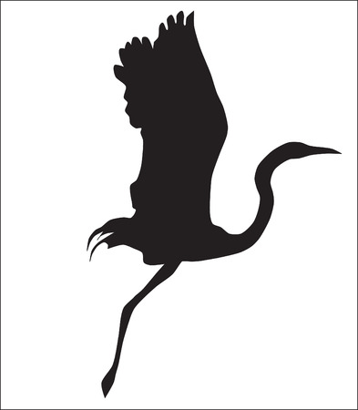 crane bird: Abstraction. A silhouette of a flying up crane