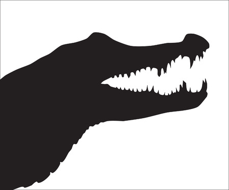 Abstraction. A silhouette of a crocodile Stock Vector - 9003524