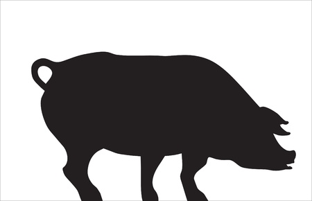 Abstraction. A pet. A silhouette of a pig. Illustration