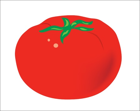 Background. Fruits. A red ripe juicy tomato Illustration