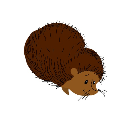 Wood animal. A small hedgehog for design Vector