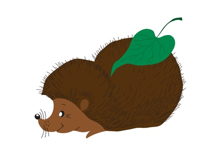 Wood animal. A small hedgehog for with a leaf Vector
