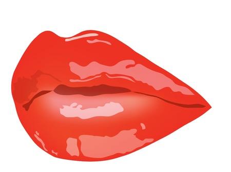 lip shine: Labbra femminili. Labbra femminili con rossetto rosso Vettoriali