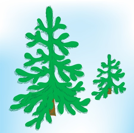 firtrees: Coniferous background. Two green fir-trees