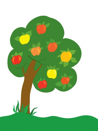 appletree: Background. An apple-tree with color apples on a lawn Illustration