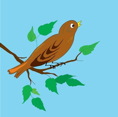 rossignol: Oiseau sur une branche avec des feuilles contre le ciel