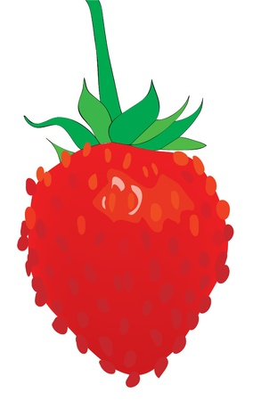Ripe juicy strawberry on a branch. Vector