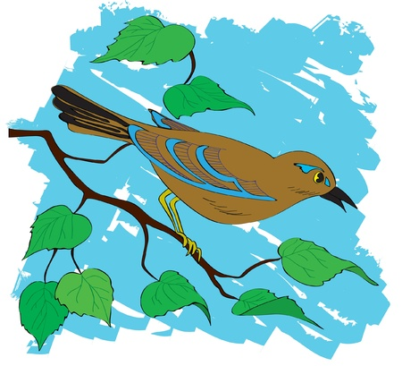 bird nightingale: Beautiful bird on a branch with leaves. Illustration