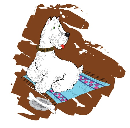 the watchman: White terrier on a laying with a stone in a bowl.