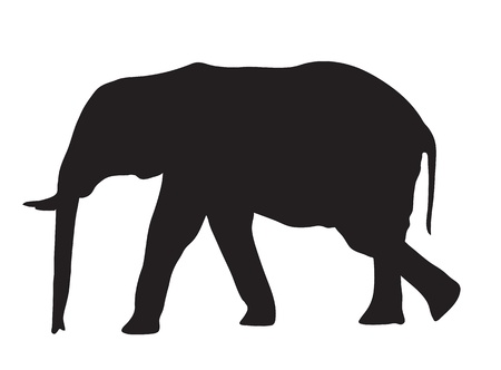 Abstract silhouette of an elephant