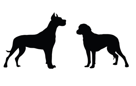 labrador puppy: Abstract black silhouette of a dog. Illustration