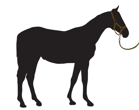 Abstract black silhouette of a horse. Vector