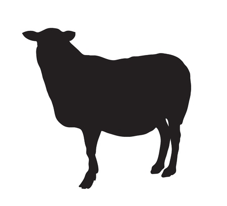 animal silhouette: Abstract black silhouette of a sheep. Illustration