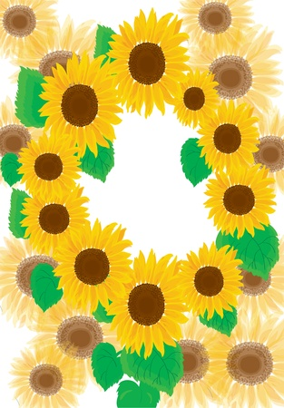 Background. A summer framework from sunflowers Vector
